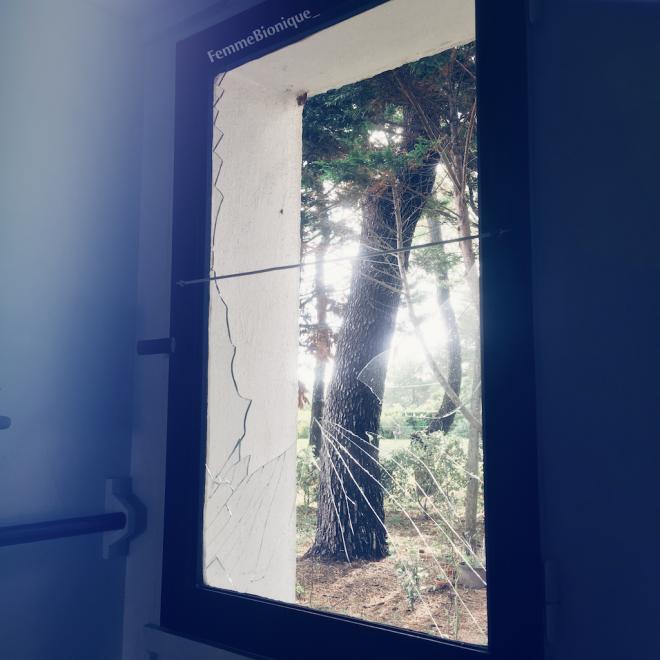 Début de la description de la photo. Petite fenêtre dont le verre est cassé en plusieurs morceaux avec des morceaux manquants. La vue donne sur un jardin avec des pins. Fin de la description.